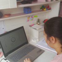 online deneme 2 (30)